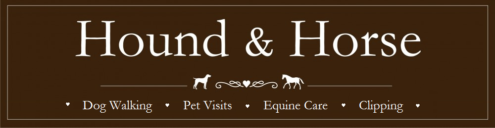 Dog Walker, Bath| Hound And Horse Care
